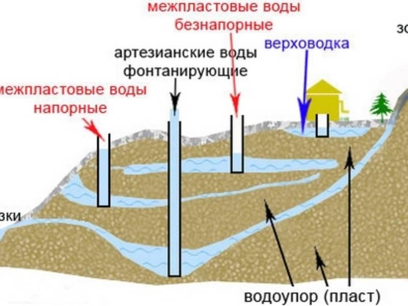 Как найти воду на участке?