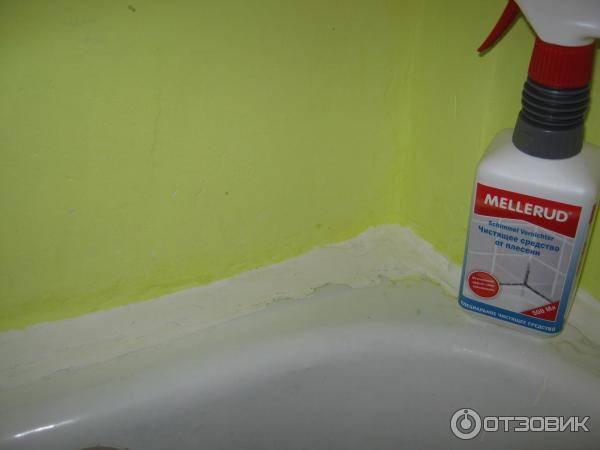 Как избавиться от плесени в ванной комнате: эффективные средства от грибка