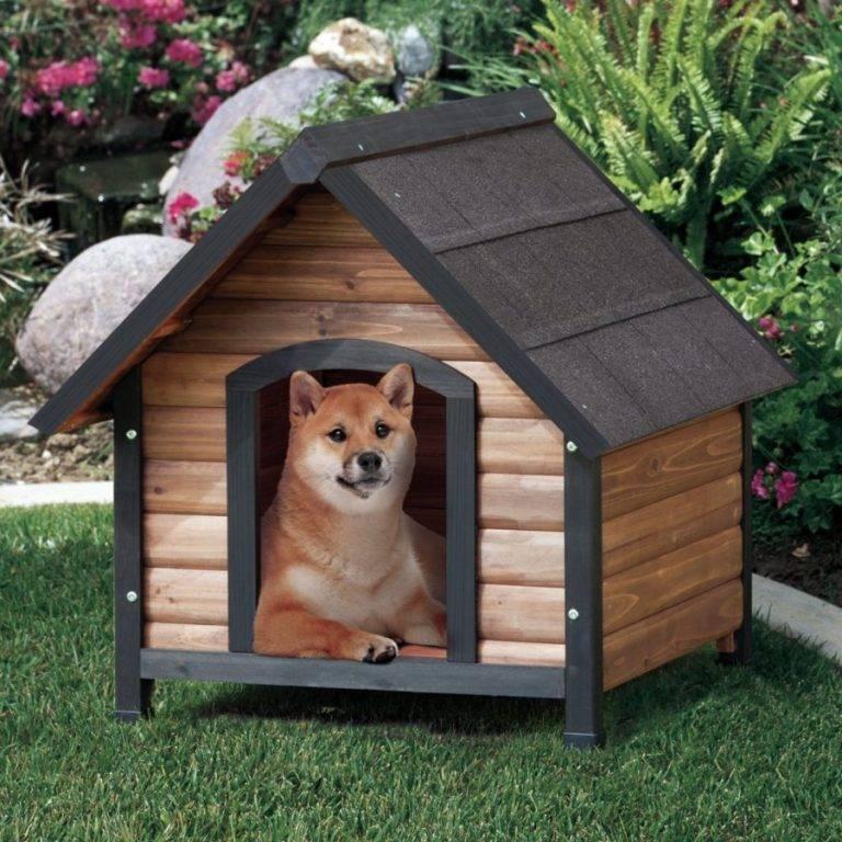 Как сделать простую будку для собаки своими руками - пошаговая инструкция, фото, советы