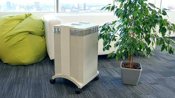 Какой очиститель воздуха выбрать для аллергиков и астматиков: рейтинг ТОП-16 лучших моделей