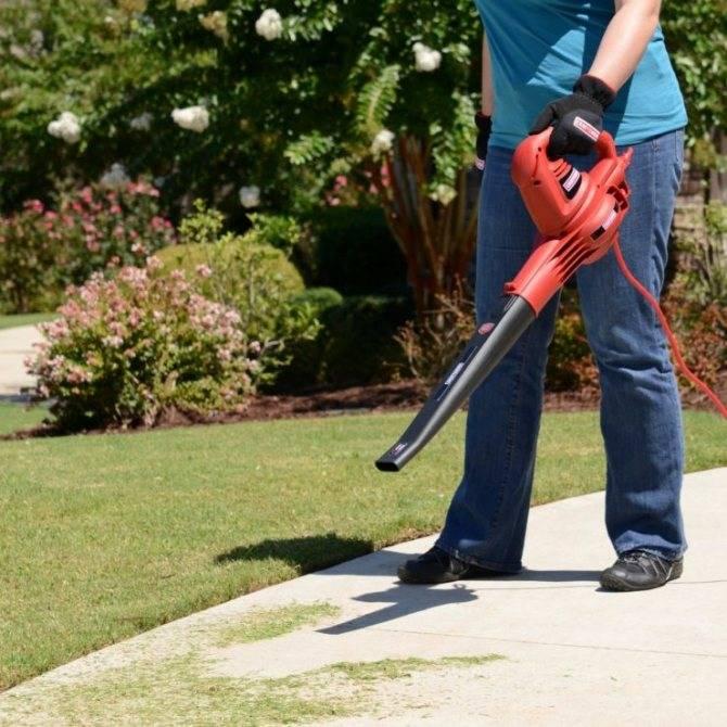14 лучших беспроводных пылесосов и советы по выбору