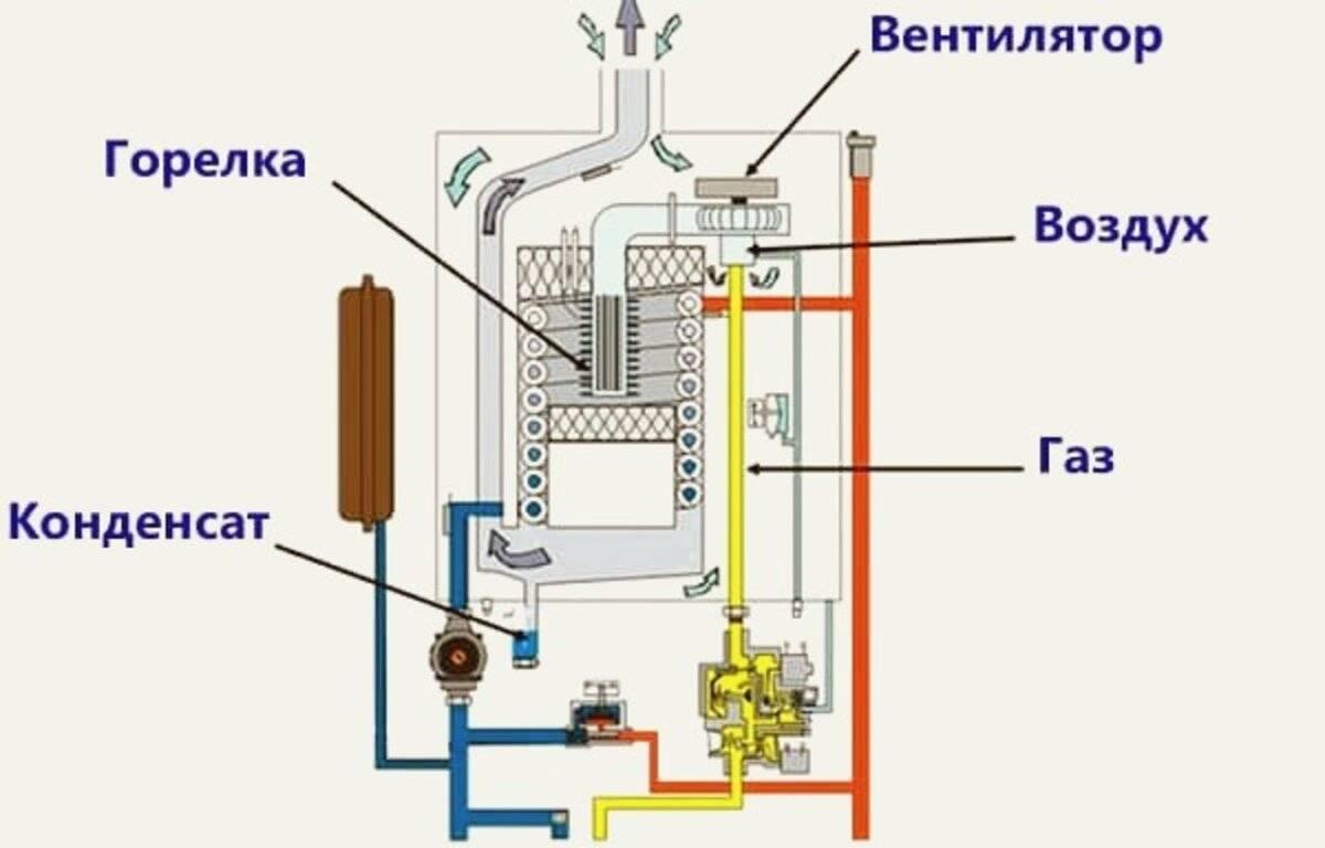 Газовые энергозависимые котлы: конструкция, преимущества и недостатки, критерии выбора