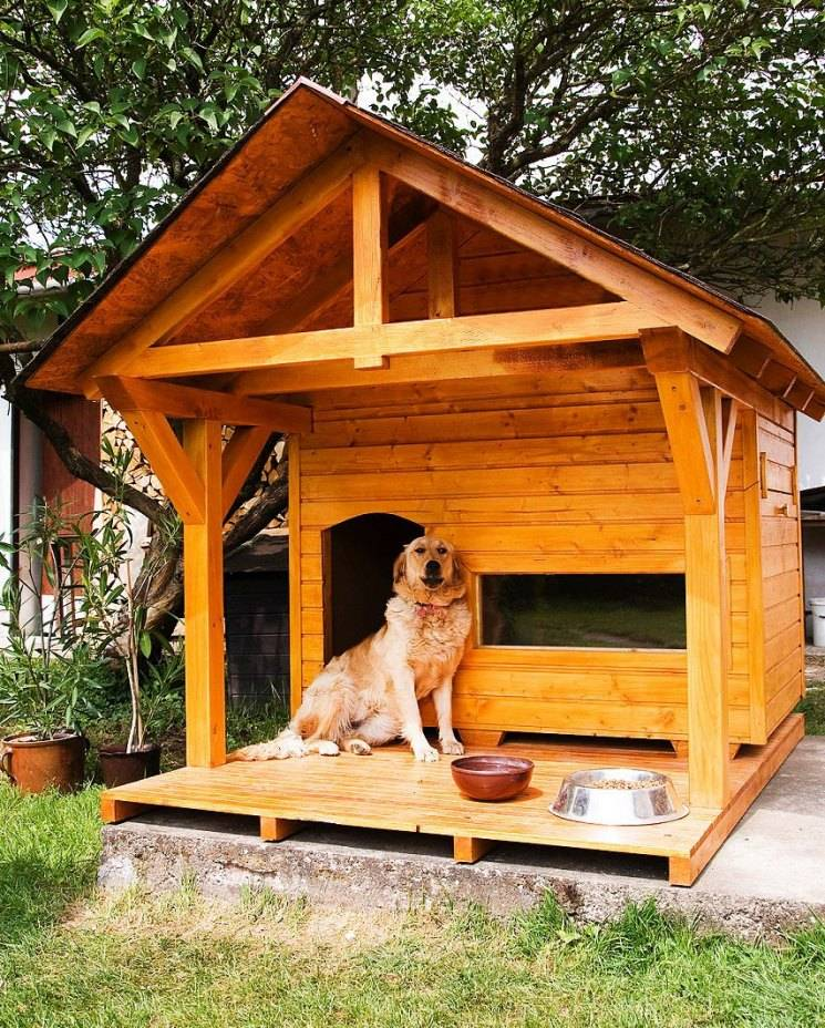 Будка для собаки своими руками из дерева: как сделать, фото, чертежи,