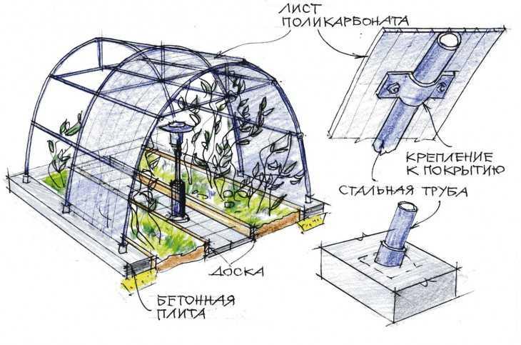 Обустройство теплицы внутри: хитрости планировки (59 фото) как обустроить теплицу из поликарбоната 3х6, оборудование внутри своими руками