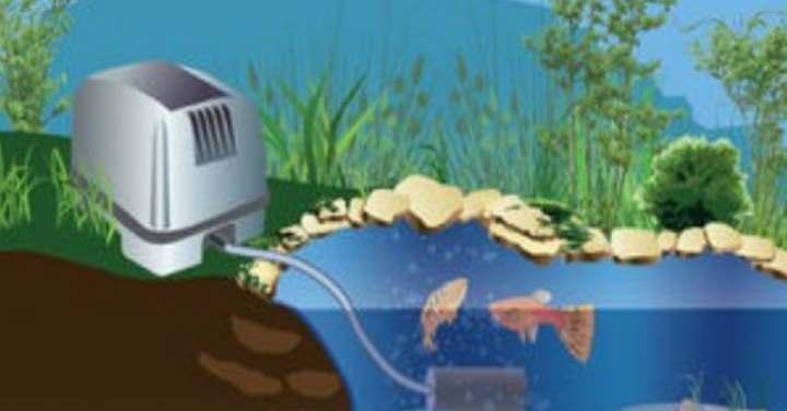 Виды аэраторов для прудов и водоемов: рекомендации по изготовлению устройств своими руками.