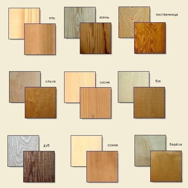 Из какой породы дерева строить дом: обзор популярных пиломатериалов - 1drevo.ru