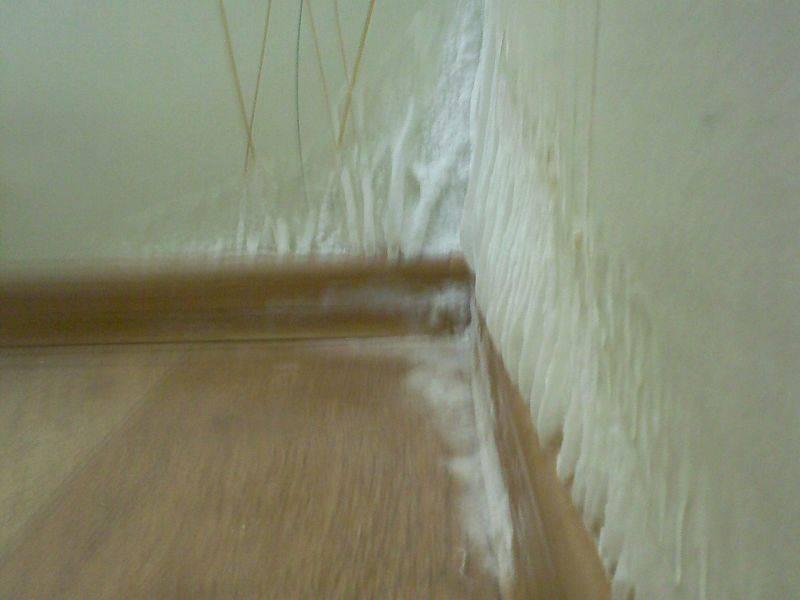 В квартире сыреет стена: причины и что делать